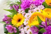 depositphotos_114209914stockphotobouquetofbrightbeautifulflowers11