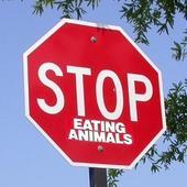 PETA fans