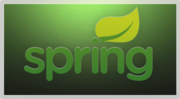 Spring Framework Developers