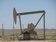 Oil & Gas (Petroleum) Industry