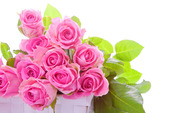 pink-roses-bouquet-flower-hd-wallpaper-1920x1200