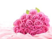 bouquet-pink-roses-dazzling