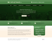 Financial Website Design