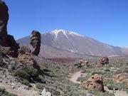 La asociación en Tenerife