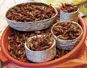 Mat: insekter