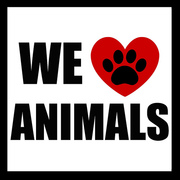 Love Animals,Don't hurt them