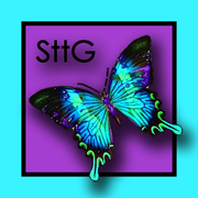 STTG Design Team