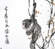 Lesson 49 Zodiac Monkey