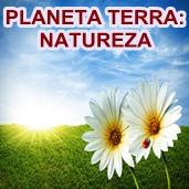 PLANETA TERRA: Natureza