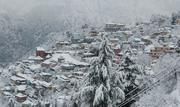 Snow feb 2013  (3)