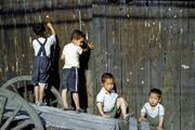 """0143 """"Knothole Gang"""" Pusan Korea 1952"""