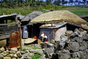 0112 Its Home  KOREA 1952