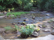 The South Fork river