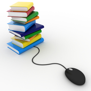 2013 / e-Books -Strategies and Actions available for the Public Libraries