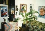 Pete & Chris's Room