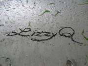 LizzyQ