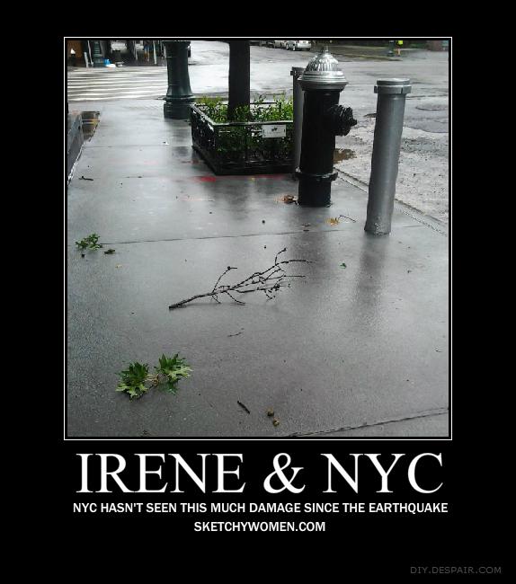 Irene & NYC