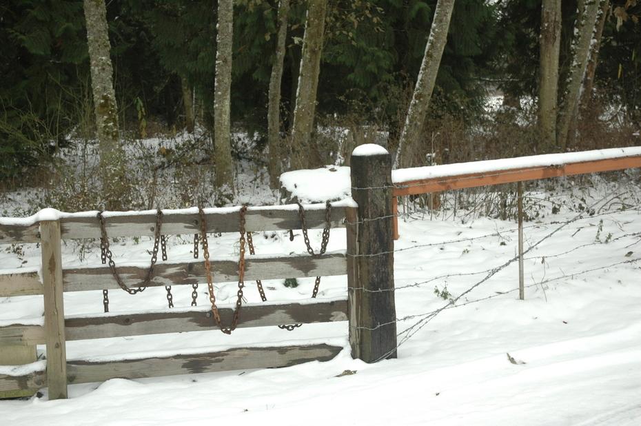 snow storm at the farm