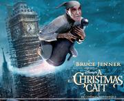 A Christmas Cait