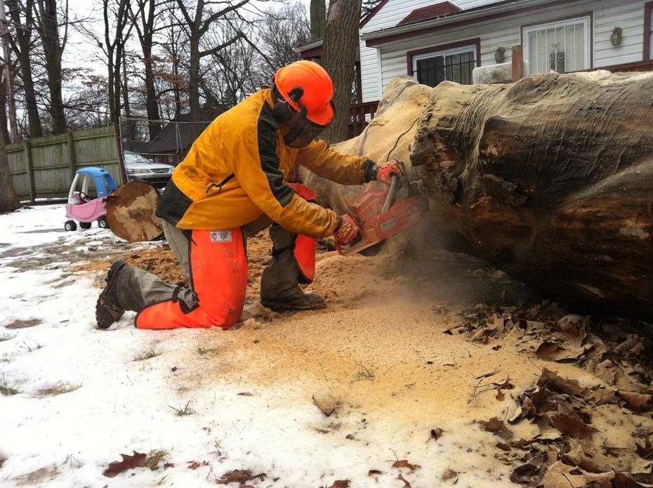 Chainsaw Crews