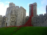 Weeping Window at Caernarfon Caste, Wales