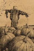 61 Pumpkin Patch Scarecrow