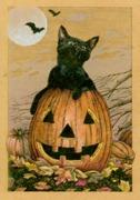 96 Pumpkin Kitty
