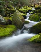 Greenbrier-Creek-2