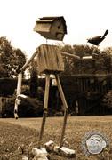 'Birdbox' Maquette