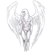 Character Design - Angel