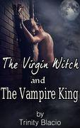 Final Witch Vampire E-Book Cover