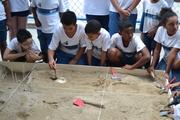 Simulação de Escavação Arqueológicas na Escola General Mitre (3)