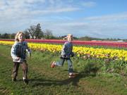 tulip time 045
