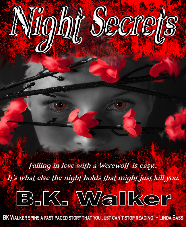 Night-Secretsfinal