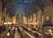 Hogwarts gruppen