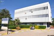 Open access Algeria