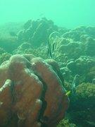 Ciencias del mar