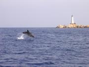 ITALIA - Rete Europea dell'Ecoturismo