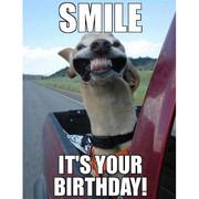 K!Happy (kinda late) birthday Link!