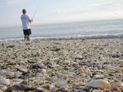 Beach Feb 9th 010