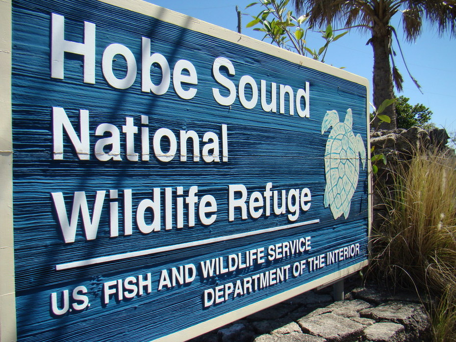 Welcome to the Hobe Sound National Wildlife Refuge