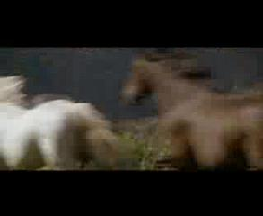 Banjo Patterson's Poem The Man From Snowy River