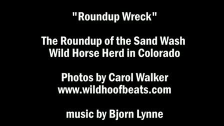 Roundup Wreck