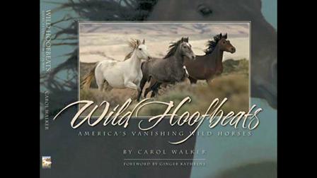 Wild Hoofbeats- America's Vanishing Wild Horses