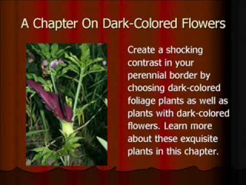 101 English Gardening Tips