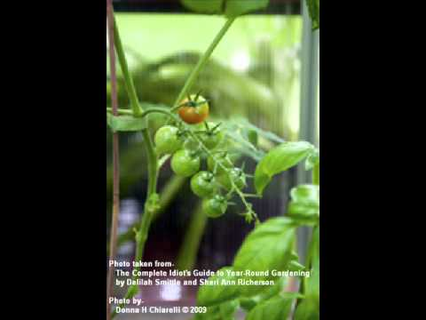 The Complete Idiot's Guide to Year-Round Gardening WBAT Interview Part 1