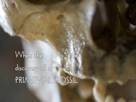 The Fossil Book Trailer