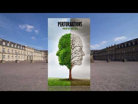 Book Video Trailer: Perturbations by Gary Beck