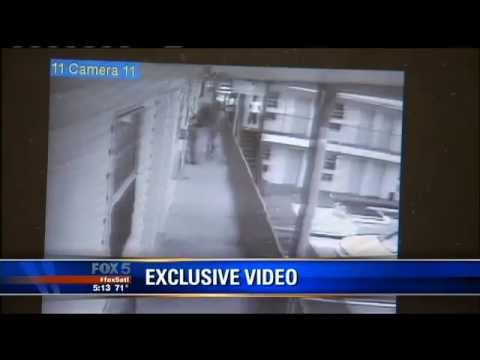 Man Throws Dog Over Motel Balcony in Georgia - Video - Full Report