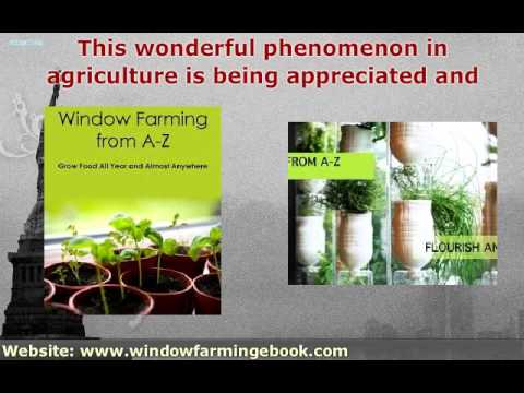 Ten Reasons Window Farming Is Great